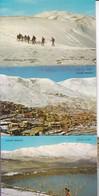 GOLAN HEIGHTS. ISRAEL. 7 POSTCARD. PALPHOT LTD. PHOTOSET SOUVENIR LAMBRANÇA GRUSS AUS. CIRCA 1980.-BLEUP - Israël