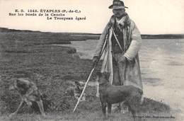 CPA 62 - ETAPLES - Sur Les Bords De La Canche Le Troupeau Egare - Etaples