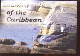 MONTSERRAT    1121 MINT NEVER HINGED SOUVENIR SHEET OF BIRDS   #  0892-2  ( - Non Classés