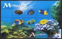 BIOT Angelfish Marine Life 1st Series MS SG#MS353 - British Indian Ocean Territory (BIOT)