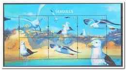 Palau 2014, Postfris MNH, Birds, Seagulls - Palau