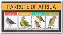 Sierra Leone 2013, Postfris MNH, Parrots Of Africa, Birds - Sierra Leone (1961-...)