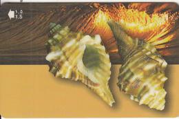 OMAN(GPT) - Seashells Of OMAN/Cymatium Trilineatum, CN : 52OMNE(0 With Barred), 04/01, Used - Oman