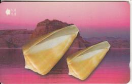 OMAN(GPT) - Seashells Of OMAN/Conus Quercinus, CN : 52OMND, 04/01, Used - Oman