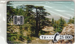 LEBANON - Cedar Tree Sodetel, 25,000 ل.ل  Lebanese Pound, Mint - Libanon