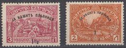 BULGARIA - 1920 - Lotto Due Valori Nuovi MH: Yvert 140/141, Come Da Immagine. - 1909-45 Regno