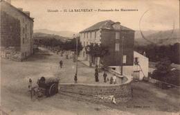 Herault, La Salvetat, Promenade Des Marronniers     (bon Etat) - La Salvetat