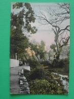 CPA TOULON RIVIERE DES AMOUREUX  (83 VAR) ANIMEE ET COLOREE CACHET 1906 ST LEONARD HTE VIENNE - Toulon