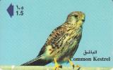 OMAN(GPT) - Common Kestrel, CN : 41OMNS/B, Used - Oman