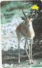 OMAN(GPT) - Gazelle, CN : 44OMNB/B, Used - Oman