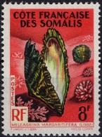 COTE DES SOMALIS Poste 311 ** MNH Coquillage Shell Meleagrina Margaritifera (CV 2 €) - French Somali Coast (1894-1967)