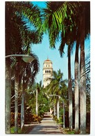 #306    University Of Ruerto Rico 'Rio Piedras' - PUERTO RICO Caribbean Islands - US Postcard - Postcards