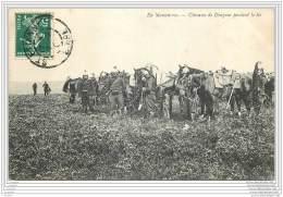 Militaria - En Manoeuvres - Chevaux De Dragons Pendant Le Tir - Manovre