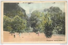 Singapore - Botanical Garden - Singapour