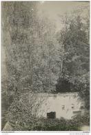 3 Rares Photos Du Parc Du Chateau De MAISON ROUGE (77) Prise Vers 1915/1920 - Fotos