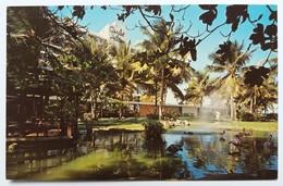 #306   Flamingos, 'Caribe Hilton' Hotel - San Juan PUERTO RICO Caribbean Islands - US Postcard - Postcards