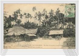VIET NAM - Cochinchine - CAP SAINT JACQUES - Un Coin D'arequiers A Longdien - Vietnam