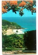 #307  'GUAJATACA' Beach - PUERTO RICO Caribbean Islands - US Postcard - Postcards