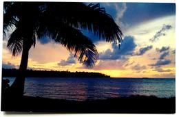#307  Sunset Beach Caribean - PUERTO RICO Caribbean Islands - US Postcard - Postcards