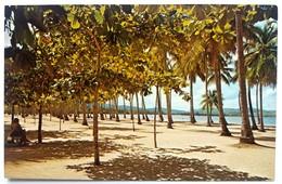 #307  'LUQUILLO' Beach - PUERTO RICO Caribbean Islands - US Postcard - Postcards