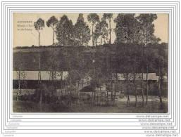 22 - GUINGAMP - Moulin A Tan Vu Du Champ - Guingamp