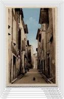 34 - CASTELNAU DE GUERS - Vieille Rue - Frankrijk