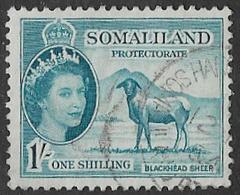 Somaliland Protectorate SG144 1953 Definitive 1/- Good/fine Used [37/30924/2D] - Somaliland (Protectorate ...-1959)