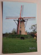 MALLE ( Westmalle ) SCHERPENBERGMOLEN (1843) Stenen Berg- Of Beltmolen - Anno ....( Zie Foto's ) ! - Malle