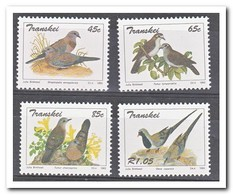 Transkei 1993, Postfris MNH, Birds - Postzegels