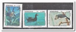 Honduras 1993, Postfris MNH, Birds - Honduras