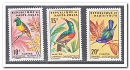 Opper Volta 1965, Postfris MNH, Birds - Opper-Volta (1958-1984)
