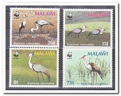 Malawi 1987, Postfris MNH, Birds, WWF - Malawi (1964-...)
