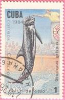 Cuba - 1984 - Fauna - Cuba - Dolphin - 1 Cent. - Cuba