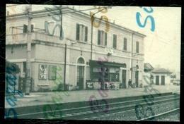 CAVA MANARA - STAZIONI - RIPRODUZIONE - Pavia