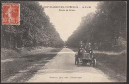 CHATEAUNEUF EN THYMERAIS - La Forêt - Route De Dreux - Châteauneuf