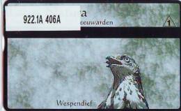 Telefoonkaart  LANDIS&GYR  NED * RCZ 922.01  406a * LACUS NATURA WESPENDIEF * VOGEL  BIRD OISEAU  TK * ONGEBRUIKT *  - Nederland