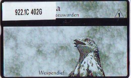 Telefoonkaart  LANDIS&GYR  NED * RCZ 922.1c  402G * LACUS NATURA WESPENDIEF * VOGEL  BIRD OISEAU  TK * ONGEBRUIKT *  - Eagles & Birds Of Prey