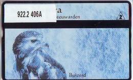 Telefoonkaart  LANDIS&GYR  NED * RCZ 922.02  406a * LACUS NATURA * BUIZEERD * VOGEL  BIRD OISEAU  TK * ONGEBRUIKT *  - Nederland