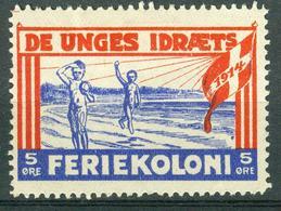 VI Vignette Dänemark 1914 - De Unges Idræts Feriekoloni, Jugend Sport Ferienlager - Cinderellas
