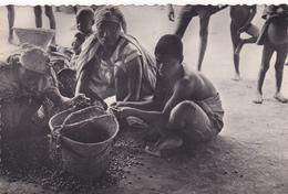 AFRIQUE,EQUATORIAL FRANCAISE,africa,congo,pointe Noire,tirage Des Noix De Palme,métier,huile De Palme,palmier,rare - Pointe-Noire