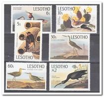 Lesotho 1985, Postfris MNH, Birds, Cacti - Lesotho (1966-...)