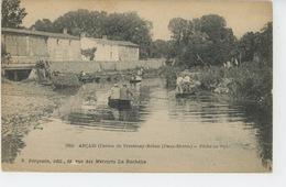 ARÇAY - Canton De Frontenay Rohan - Pêche Au Filet - France