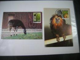 "BELG.1992 2486 & 2487 FDC's Maxicards ( Antwerpen ) : "" Zoo D'Antwerpen "" - FDC"