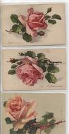 KLEIN - LOT DE 3 CARTES - ROSE - - Klein, Catharina