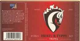 Brouwerij Boelens  Hestur Typpi - Beer