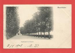 """C.P.A.  ( 80 )  """" MONTDIDIER"""" Esplanade Du Prieuré  Voir Les 2 Photos - Montdidier"""
