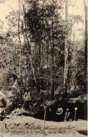 CPA Op Het Placer Dien Mersi Sarakreeek Werkplaats In De Monding Van De Ravyn SURINAME (a2978) - Surinam