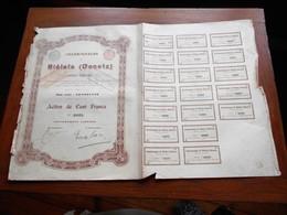 """Action De 100F""""Charbonnages De Biélaïa""""Donetz Russie Russia 1895  N° 40525 - Russie"""