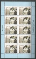 10x KYRGYSTAN - MNH - Animals - Birds - WWF - Uccelli
