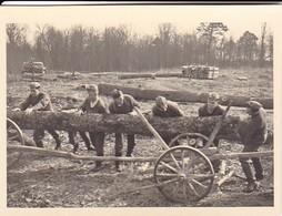 Foto Gruppe Deutsche Soldaten Bei Holzarbeiten - Urzędów Polen - 1941 - 8*5,5cm (35110) - Guerra, Militari